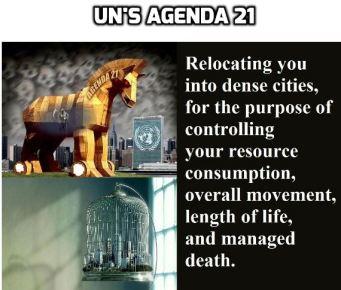 agenda 21 own